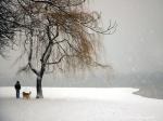 winter_solitude